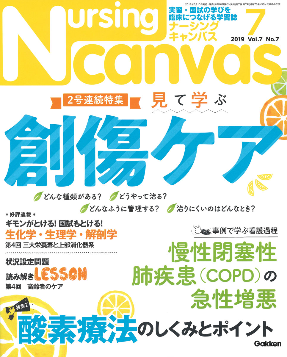 『Nursing Canvas2019年7月号Vol.7No.7』