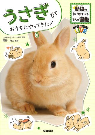 学研の図鑑LIVEポケット うさぎがおうちにやってきた!