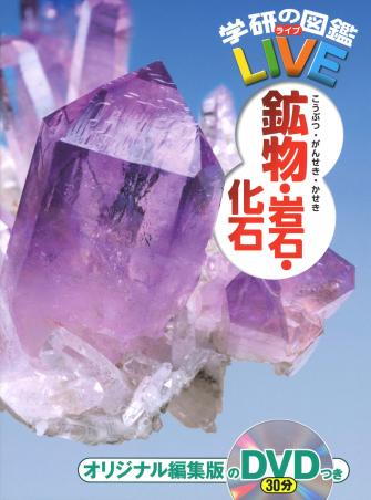 鉱物・岩石・化石