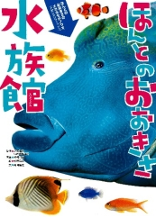 ほんとのおおきさ ほんとのおおきさ水族館