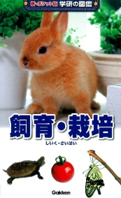 新ポケット版学研の図鑑 飼育・栽培