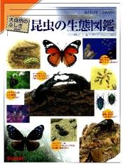 大自然のふしぎ 増補改訂 昆虫の生態図鑑