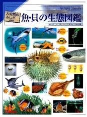 大自然のふしぎ 増補改訂 魚・貝の生態図鑑