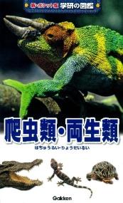 新ポケット版学研の図鑑 爬虫類・両生類