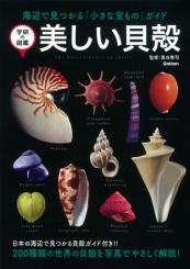 学研のクイズ図鑑 美しい貝殻